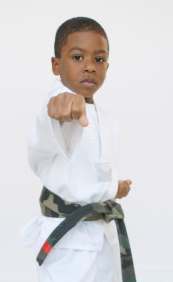 North Metro Martial Arts - Kids Karate